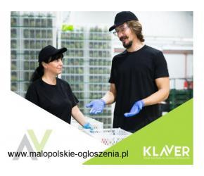 Pracownik produkcji - praca wakacyjna dla studentów i nie tylko z darmowym transportem do Holandii