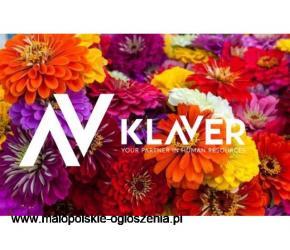 Praca w Holandii przy kwiatach od zaraz